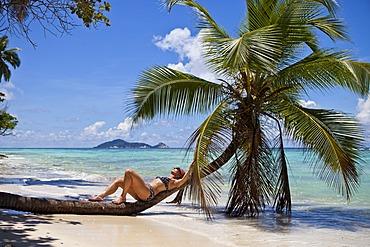 Woman in a bikini relaxing on a palm tree, Anse La Passe, Silhouette Island, Seychelles, Africa, Indian Ocean