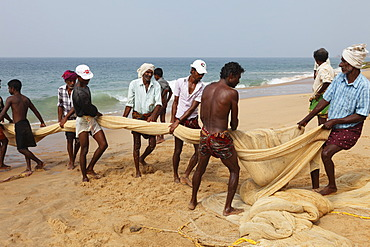 Fishermen pulling in a net, beach south of Kovalam, Malabar Coast, Malabar, Kerala, southern India, India, Asia