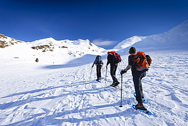 Snow shoe hikers during ascent to Mt Hoertlahner above Durnholz, Sarntal valley, Mt Hoertlahner at back, South Tyrol, Italy, Europe