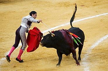 Matator, bullfighter, Benidorm, Spain, Europe
