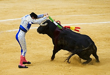 Matador, bullfighter, Benidorm, Spain, Europe