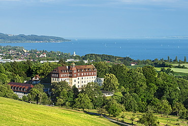 View across a pasture to Lake Constance with Schloss Spetzgart Castle, town of Ueberlingen at back, Lake Constance region, Baden-Wuerttemberg, Germany, Europe