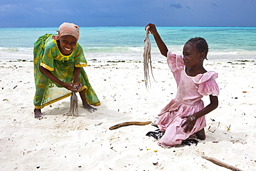 Children beating an octopus with sticks in order to make it edible, Jambiani, Zanzibar, Tanzania, Africa
