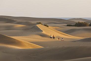 Sand dunes of Maspalomas, Gran Canaria, Canary Islands, Spain, Europe