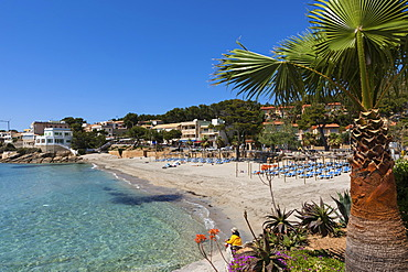 The bay and beach of Sant Elm, municipality of Andratx, Sant Elm, Mallorca, Balearic Islands, Mediterranean Sea, Spain, Europe