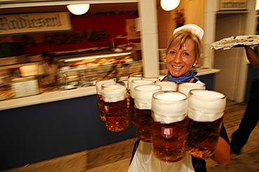Waitress, Wies\'n, October fest, Munich, Bavaria, Germany, Europe