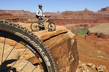 Mountain bikers, Colorado River, White Rim Trail, Moab, Utah, USA