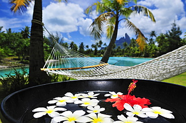 Hammock, palm trees, floral decorations, St. Regis Bora Bora Resort, Bora Bora, Leeward Islands, Society Islands, French Polynesia, Pacific Ocean