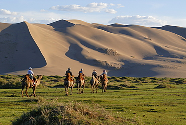 Tourists on camel riding through a lush green grass landscape towards the great Khorgoryn Els sand dunes in the Gobi Desert, Gurvan Saikhan National Park, Oemnoegov Aimak, Mongolia, Asia