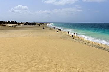 Beach of Santa Maria, Sal, Cape Verde, Africa