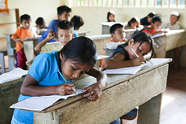 Pupils learning to write in a primary school in a village with no road access in the Oriente rain forest, Curaray, Ecuador, South America