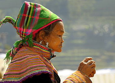 Profile of old Vietnamese woman in front of rice terraces, Bac Ha, North Vietnam, Southeast Asia