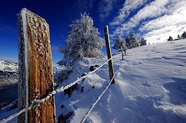 Fence in winter landscape, Firtzstock, Glarus, Eastern Switzerland, Switzerland, Europe
