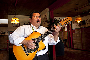 Singer playing a guitar in a restaurant, Bogota, Colombia, South America