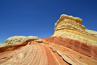 Lollipop Rock, Brain Rocks at White Pocket, eroded Navajo sandstone rocks with Liesegang bands or Liesegang rings, Pareah Paria Plateau, Vermillion Cliffs National Monument, Arizona, Utah, Southwestern USA, USA
