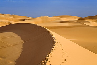 Footprints on a dune, Libyan Desert, Libya, Africa