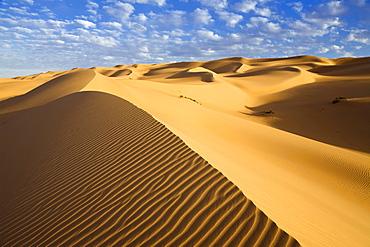 Ubari dunes in the Libyan Desert, Sahara, Libya, North Africa, Africa