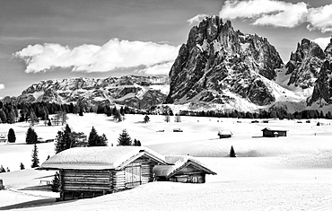 Black and white image of the winter landscape of the Dolomites with a wooden hut at the front and the peak of Sassolungo Mountain at the rear, Seiser Alm, Dolomites, Alto Adige, Italy, Europe