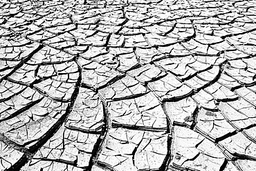 Cracked mud in a dried up water hole, Painted Desert, Hopi Reservation, Navajo Nation Reservation, Arizona, Southwest, United States of America, USA, North America