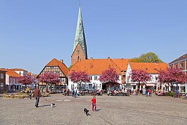 Market square and St. Michaelis Church, Eutin, Schleswig-Holstein, Germany, Europe