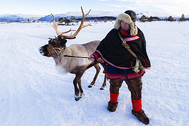Man in traditional Sami dress, with a reindeer, Villmarkssenter, near Tromso, Norway, Europe