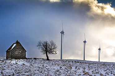 Wind turbines of the Cezallier windfarm, Puy de Dome department, Auvergne, France, Europe