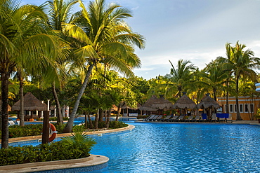 Palm trees, swimming pool, beach chairs, palm umbrellas, Iberostar Paraiso Beach resort, Playa del Carmen, Quintana Roo, Riviera Maya, Mexico, Central America
