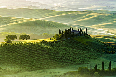 Typical green Tuscan landscape in Val d'Orcia, farm on hill, fields, cypress (Cupressus sp.) trees and morning fog at sunrise, San Quirico d'Orcia, Tuscany, Italy, Europe