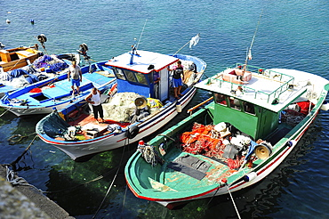 Port with fishing boats, Gallipoli, Apulia, Italy, Europe