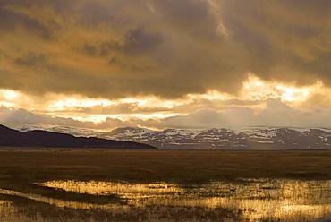 Fjell near Norwegian coast, Varanger Peninsula, Norway, Europe