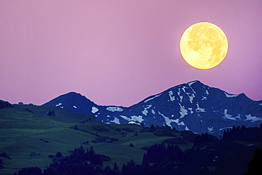 Big full moon over the Swiss Alps, pink sky, Flims, Canton of Grisons, Switzerland, Europe