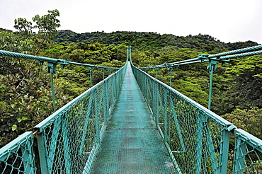 Suspension bridge in the cloud forest, Selvatura Park, Monteverde, province of Alajuela, Costa Rica, Central America