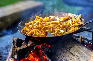 Chanterelles in a pan over an open fire