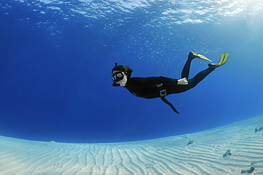 Freediver diving above a sandy bottom, Red Sea, Egypt, Africa