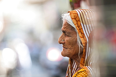 Elderly woman, portrait, Udaipur, Rajasthan, India, Asia