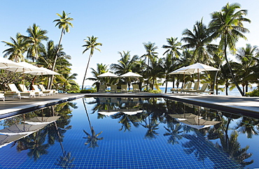 Sun loungers and parasols by a pool under palm trees, Vomo Island, Mamanuca Islands, Fiji, Oceania
