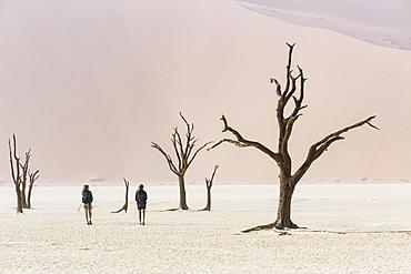 Tourists in Deadvlei, Sossusvlei, Namibia, Africa