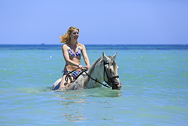 Woman wearing a bikini riding a Barb horse in the sea, riding vacation, Djerba, Tunisia, Africa
