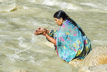 A female pilgrim at the banks of the river Ganges is praying, offering the holy water, Gangotri, Uttarakhand, India, Asia
