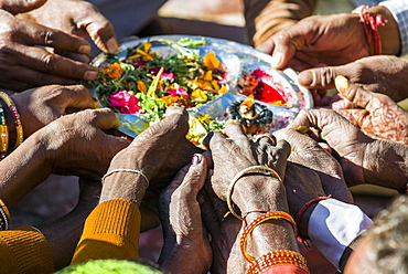Many hands are holding a plate, pilgrims performing Ganga Pooja, a religious ceremony, Gangotri, Uttarakhand, India, Asia