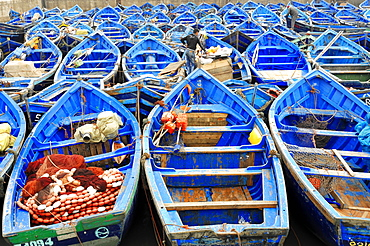 Typical blue fishing boats in the harbor of Essaouira, Morocco, Africa