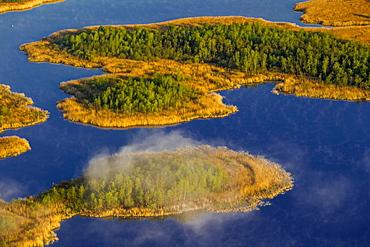 Jamelsee Lake with mist, Roggentin, Mecklenburg Lake District, Mecklenburg-Western Pomerania, Germany, Europe