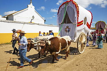 Decorated oxcarts, people in traditional clothes, Pentecost pilgrimage of El Rocio, Huelva province, Andalusia, Spain, Europe