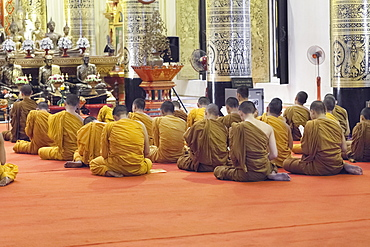 Monks praying at Wat Chedi Luang, Chiang Mai, Thailand, Asia