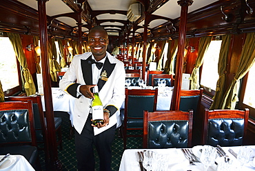 Service staff with wine selection in luxury train, Royal Livingstone Express, Livingstone, Zambia, Africa