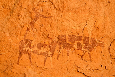 Neolithic rock art, rock painting of two cows or bulls, Bovidian period, Tassili n'Ajjer National Park, Unesco World Heritage Site, Algeria, Africa