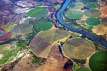 Circular fields on the Orange River, irrigation of large areas in the Karoo Desert, Gariepdam, Free State Province, South Africa, Africa