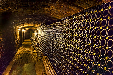 Wine cellar, Cavas de Bohigas, Catalonia, Spain, Europe