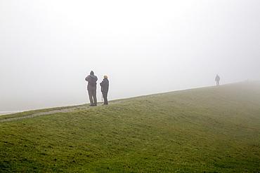 Hikers standing on a dyke, in dense autumn fog, Spiekeroog, East Frisian Islands, East Frisia, Lower Saxony, Germany, Europe
