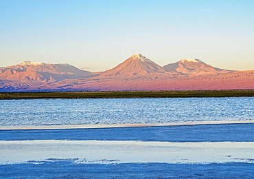 View over the Laguna Baltinache towards the Volcano Licancabur at sunset, Salar de Atacama, Antofagasta Region, Chile, South America